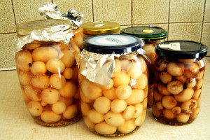 pickled-onions-correct lenafusion.gr